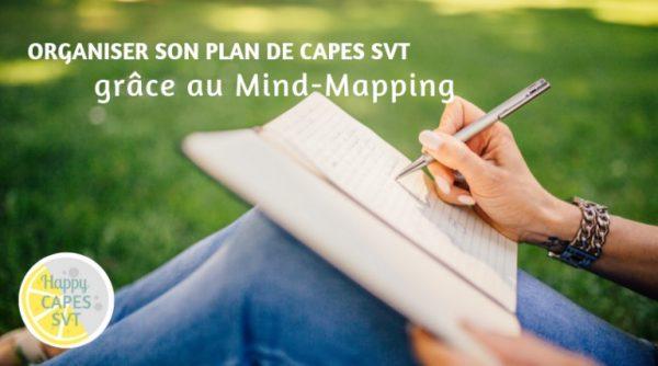 Organiser son plan grâce au Mind-Mapping